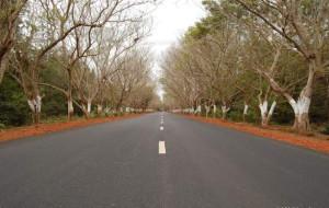 The Puri Konark Marine Drive