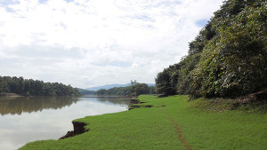 View of Periyar from Pappitta Bird Trial