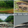 Wildlife Sanctuaries Uttarakhand
