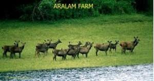 aralam wildlif