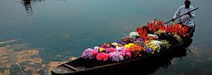 colourful sikhara
