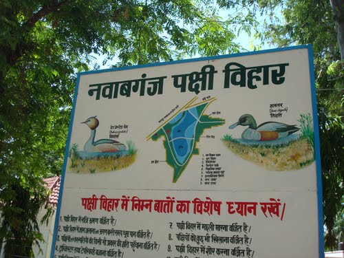 Wildlife Sanctuary in Uttar Pradesh