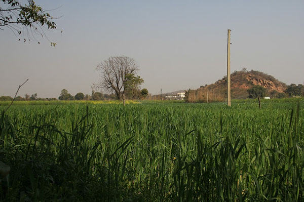Places to Visit in Haryana