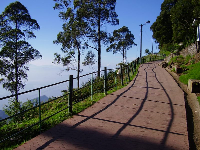 kodai-coakers-view