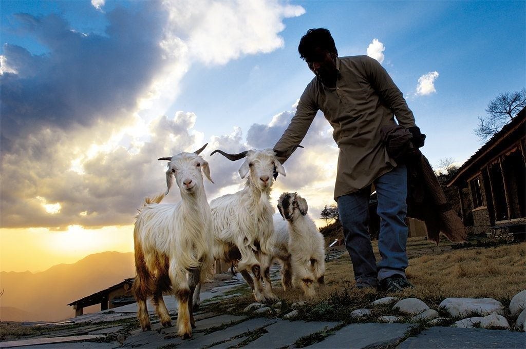 Educational Tour to Uttarakhand